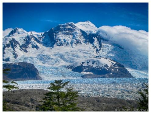 Glaciar Colonia, Campos de Hielo Norte.